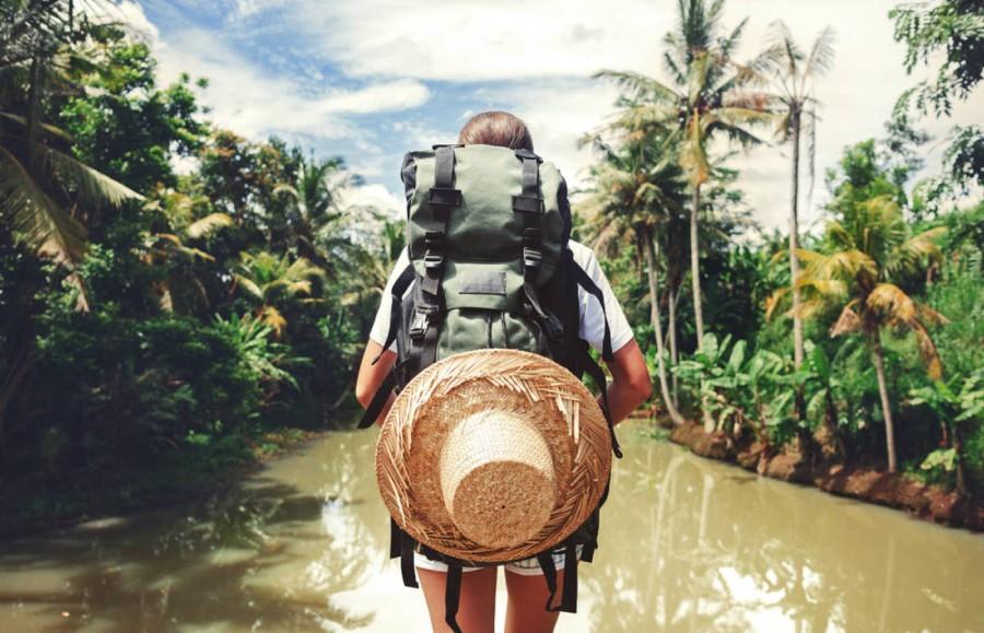 Guía del viajero